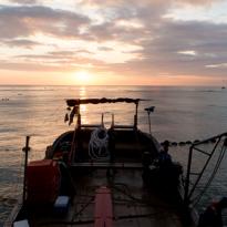 花蓮七星潭定置漁場海上捕撈作業紀錄